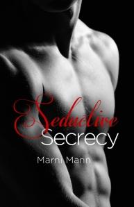 Seductive Secrecy Cover